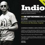 Indio Solari 2013
